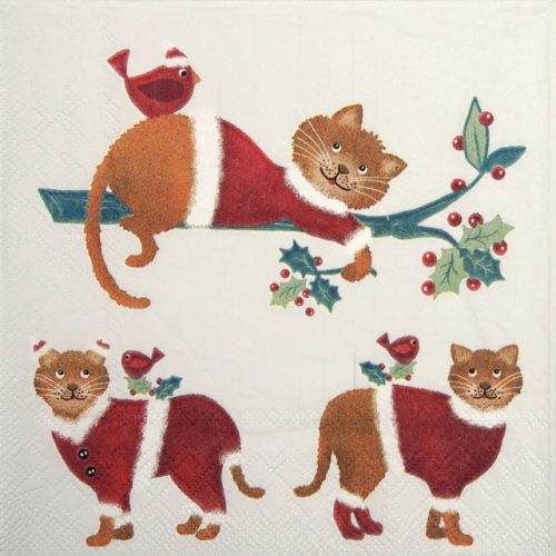 Paper Napkin - Dressed Cats White