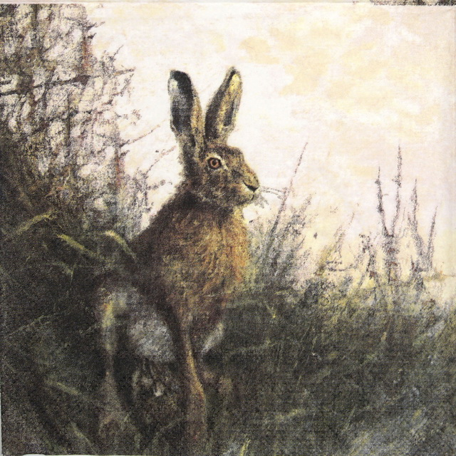 Lunch Napkins (20) - Portrait of Hare