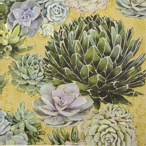 Paper Napkin - Nigel Quiney: Succulents