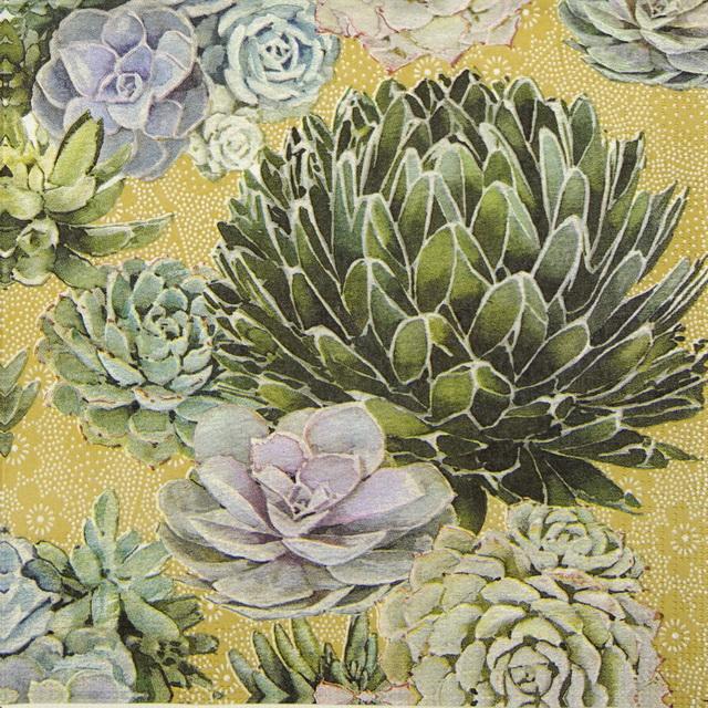 Paper Napkin - Nigel Quiney: Succulents