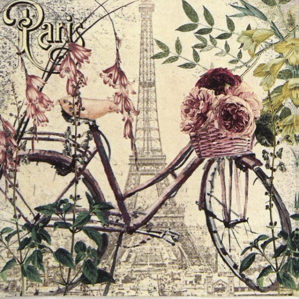 Lunch Napkins (20) - Velo a Paris