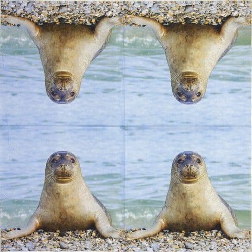 Paper Napkin - Seal