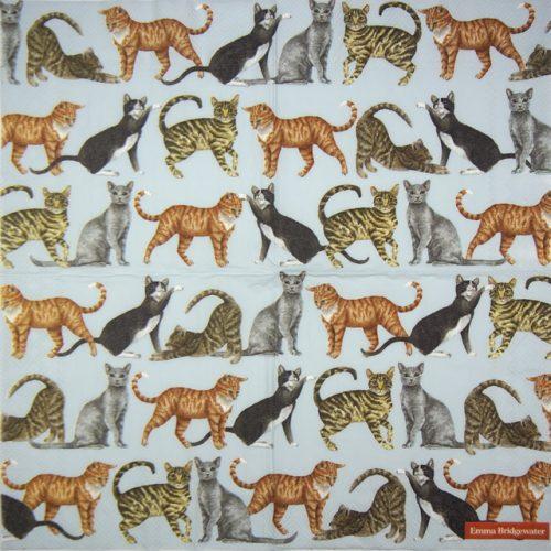 Paper Napkin -  Cats