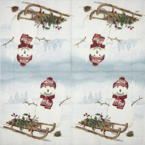 Lunch Napkins (20) - Frank Snow