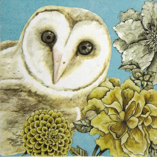 Lunch Napkins (20) - Owl Tale