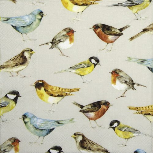 Lunch Napkins (20) - The Birds