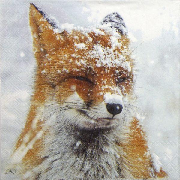 Lunch Napkins (20) - Winter Fox