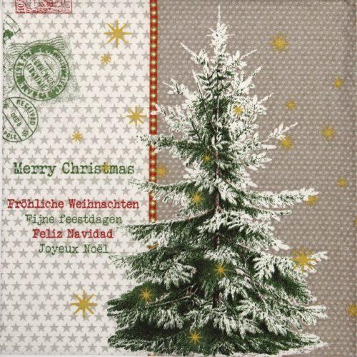 Paper Napkin - Fijne feestdagen