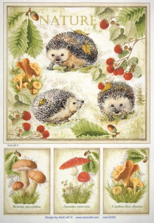 Rice Paper - Autumn Hedgehog