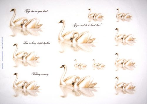 Rice Paper -  Swans