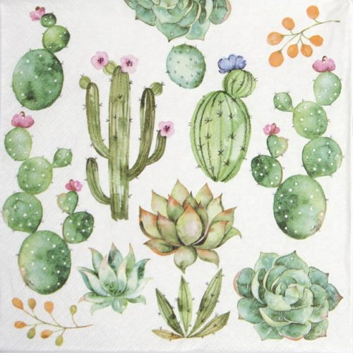 Lunch Napkins (20) - Cactus & Succulents
