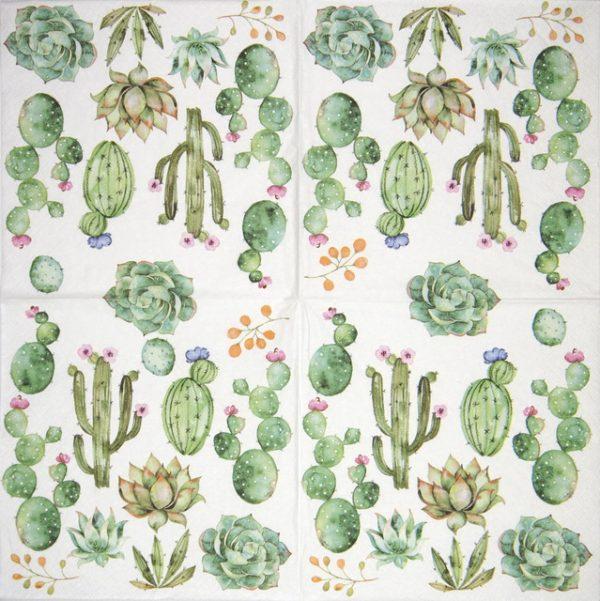 Paper Napkin -  Cactus & Succulents