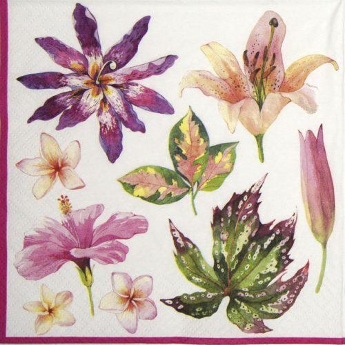 Paper Napkin - Fleurs Tropicales