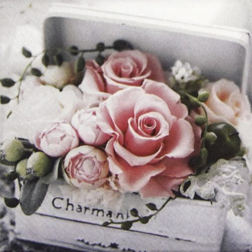 Lunch Napkins (20) - Charming Box