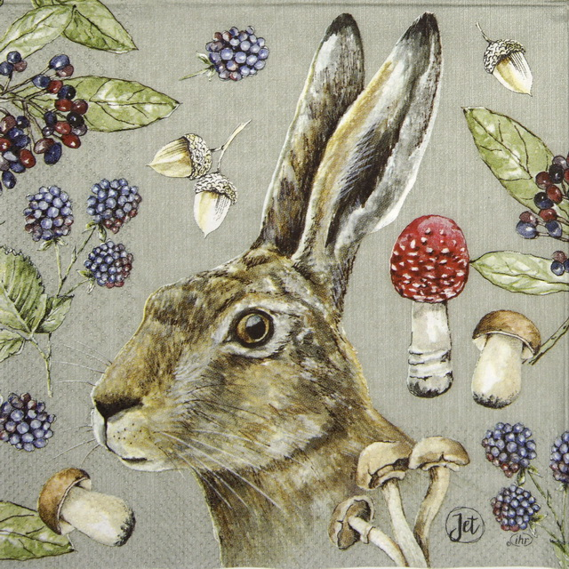 Lunch Napkins (20) - Country Rabbit linen