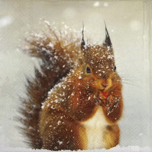 Paper Napkin -  Winter Squirrel