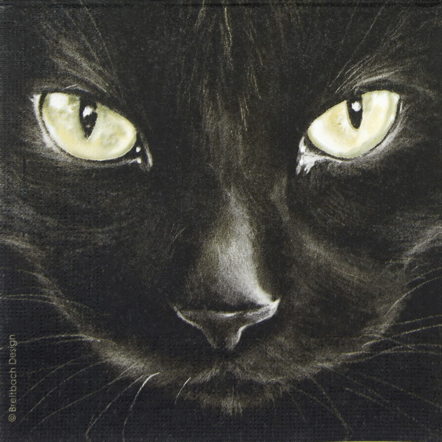 Lunch Napkins (20) - Breitbach Design: Black Cat
