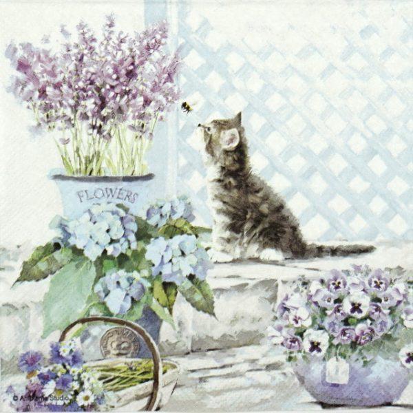 Paper Napkin - Kitten