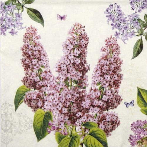 Lunch Napkins (20) - Syringa