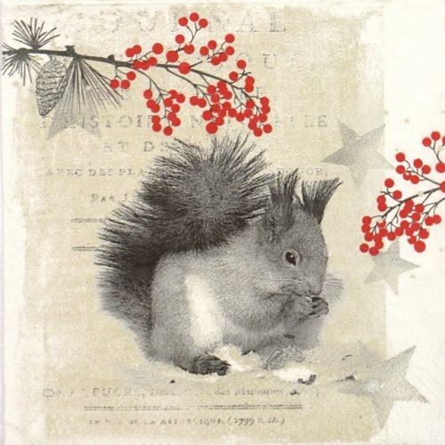 Paper Napkin - Star Squirrel