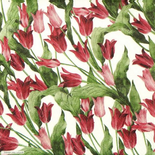 Lunch Napkins (20) - Red Tulip White background