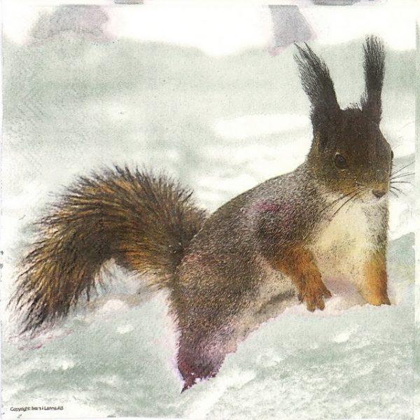 Lunch Napkins (20) - Squirrel