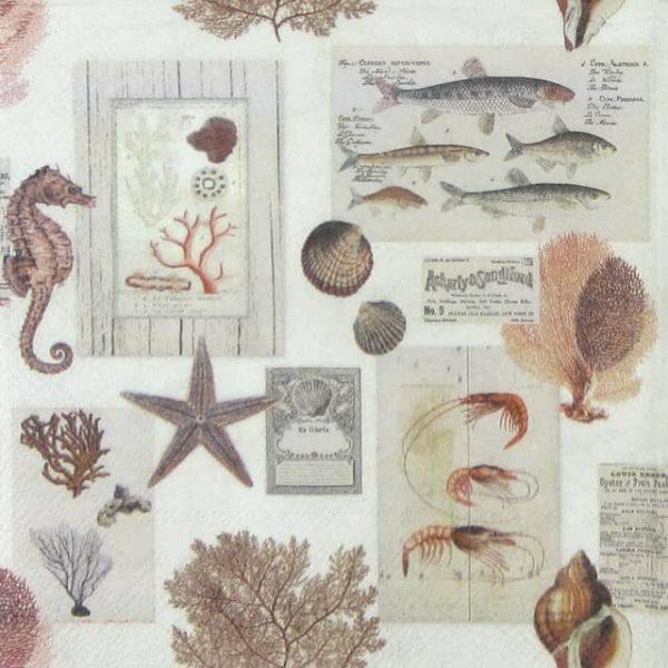 Paper Napkin - Sepia Sea Cream