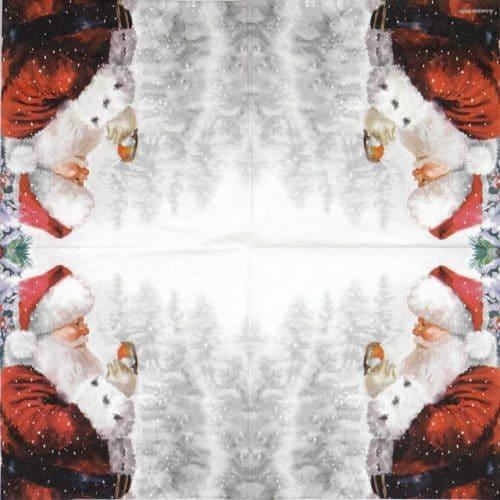 Paper Napkin - Telling Robin