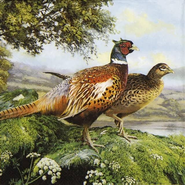 Paper Napkin - Pheasant