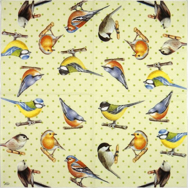 Lunch Napkins (20) - Birds and dots green