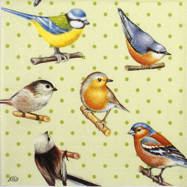 Paper Napkin - Birds and dots green
