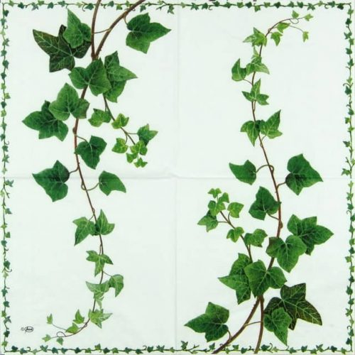 Paper Napkin - Ivy Tendril