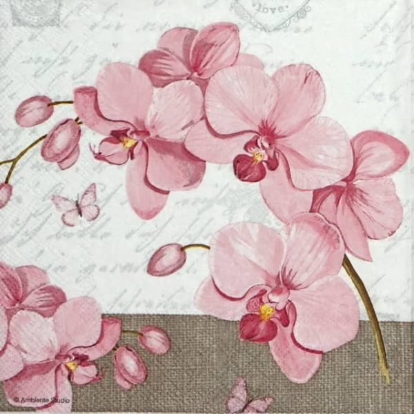 Lunch Napkins (20) - Orchids & Love