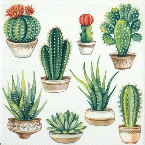 Lunch Napkins (20) - Cactus White