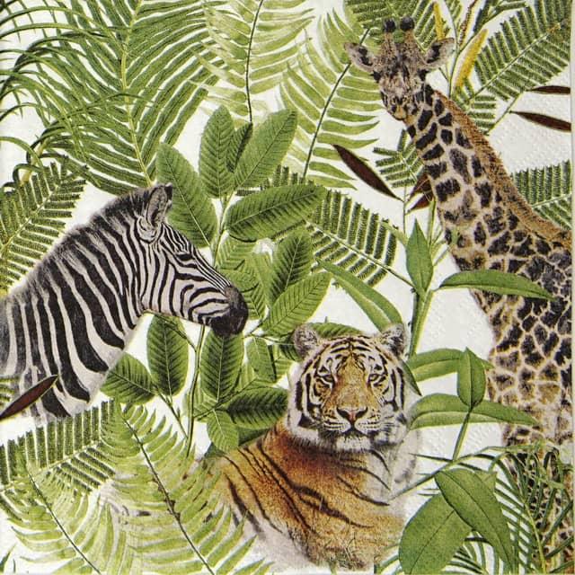 Lunch Napkins (20) - Safari