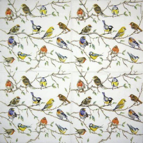 Paper Napkin - Birds Meeting