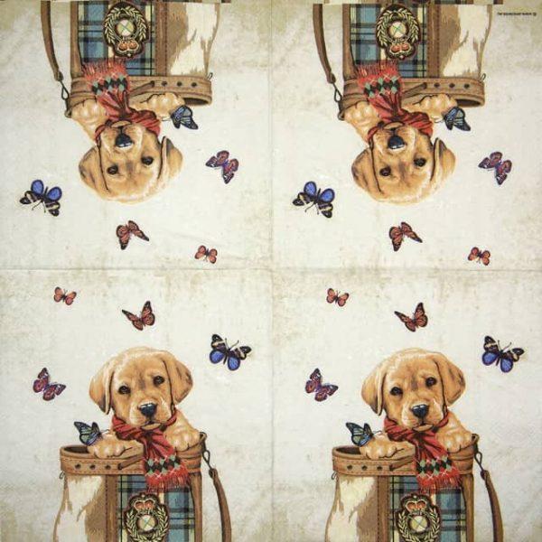 Paper Napkin - Buddy