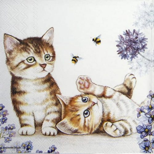 Cocktail Napkins (20) - Cats and Bees