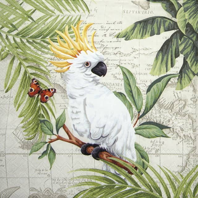 Lunch Napkins (20) - Cockatoo