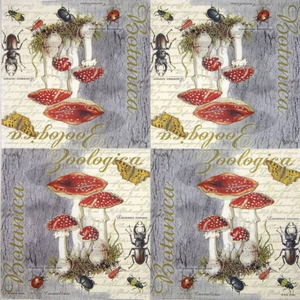 Paper Napkin - Fly Agaric and Beetle