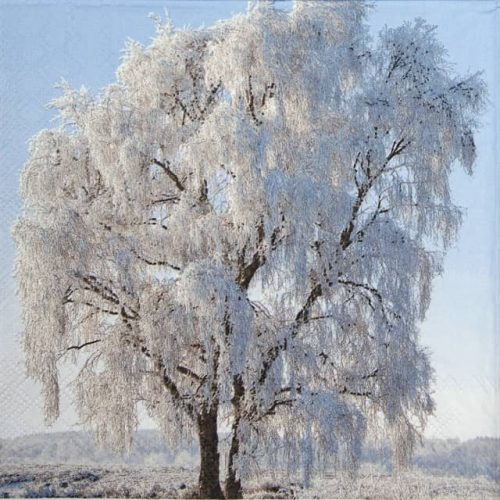 Paper Napkin - Frozen Tree