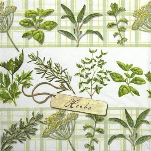Cocktail Napkin - Herbs