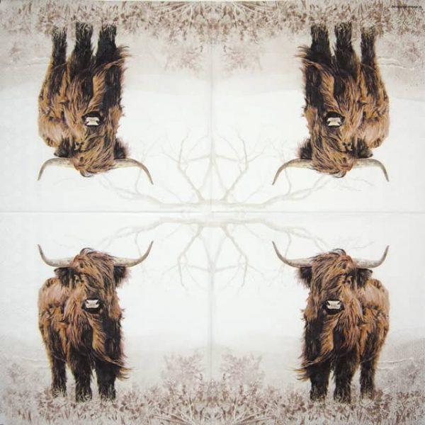 Paper Napkin - Highlander