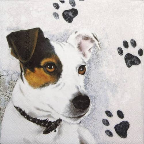 Cocktail Napkins (20) - Jack Russel