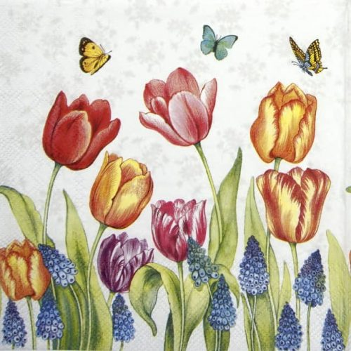 Cocktail Napkins (20) - Tulips & Muscari