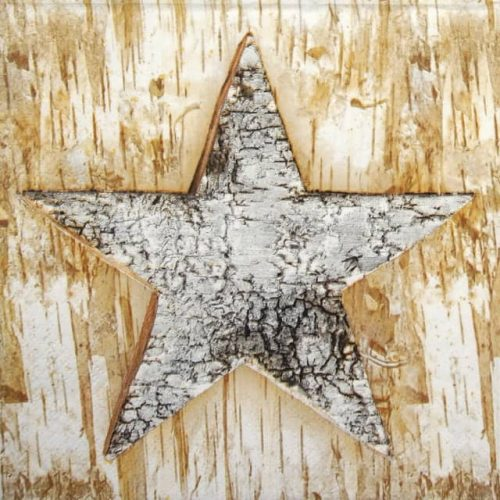 Paper Napkin - Wooden Eco Star