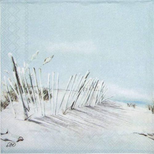 Cocktail Napkins (20) - Beach Life