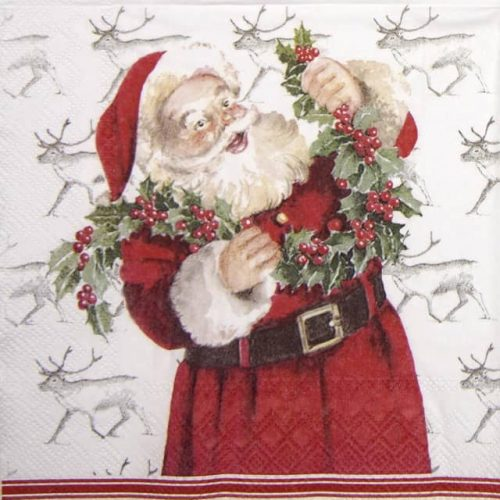 Lunch Napkins (20) - Mister Claus