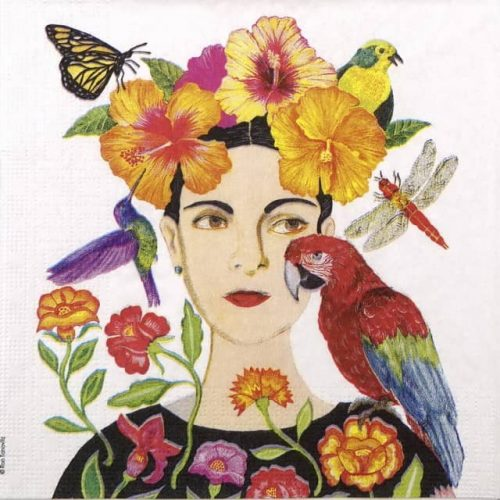 Paper Napkin - Ron Tanovitz: La Dolorosa