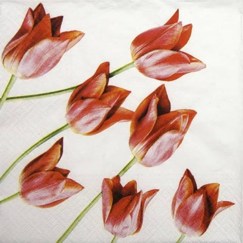 Lunch Napkins (20) - Red Tulips